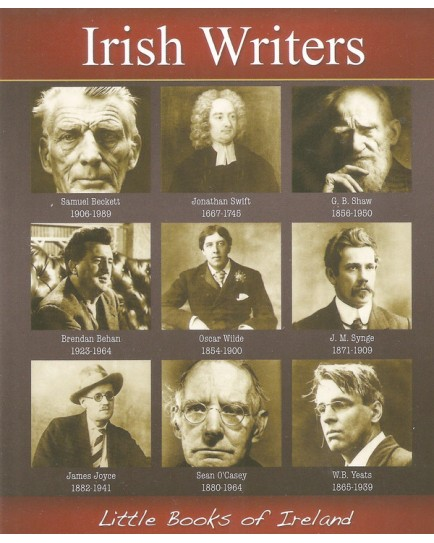 Libro Irish Writers